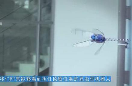 可以乱真!新型机器人模拟蜻蜓飞行