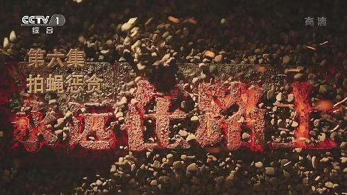 大型电视专题片《永远在路上》第六集《拍蝇惩贪》