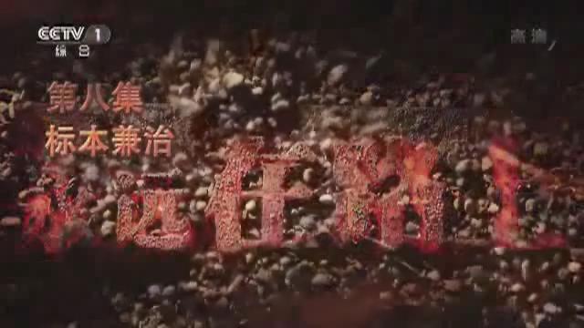 大型电视专题片《永远在路上》第八集《标本兼治》