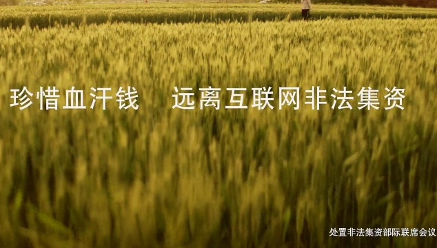 防范非法集资公益广告:《血汗篇》