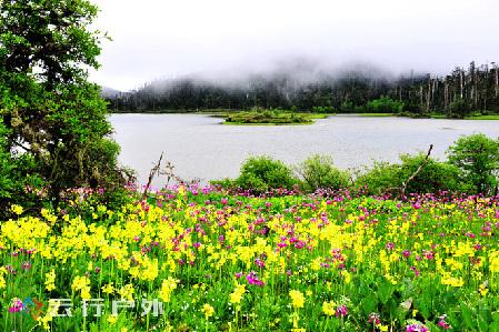 7月暑期到香格里拉高山上的秘境—碧沽天池玩