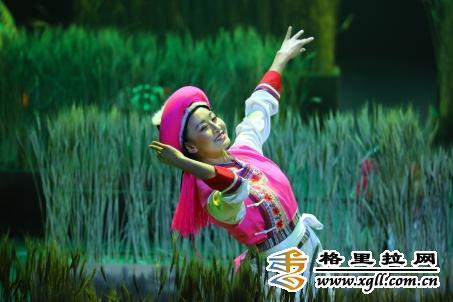 第十届康巴艺术节迎宾歌舞晚会掠影
