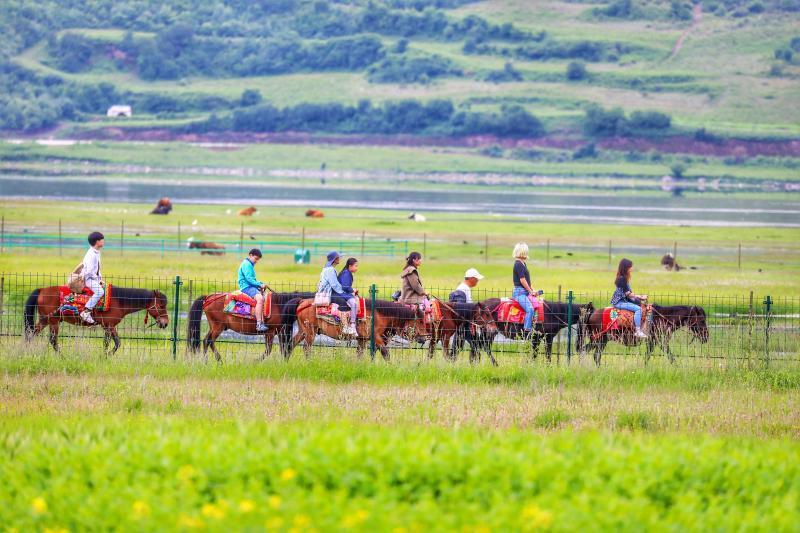 纳帕海依拉草原吸引游客骑马观光