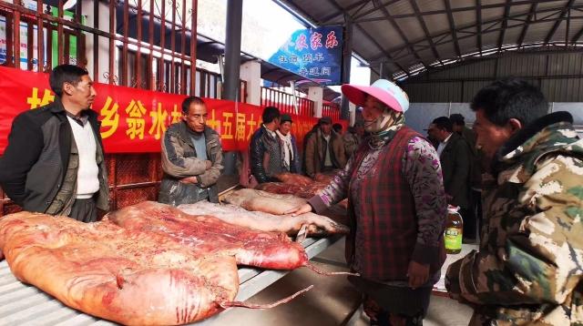 第十五届香格里拉市格咱乡翁水村旅游文化节举办