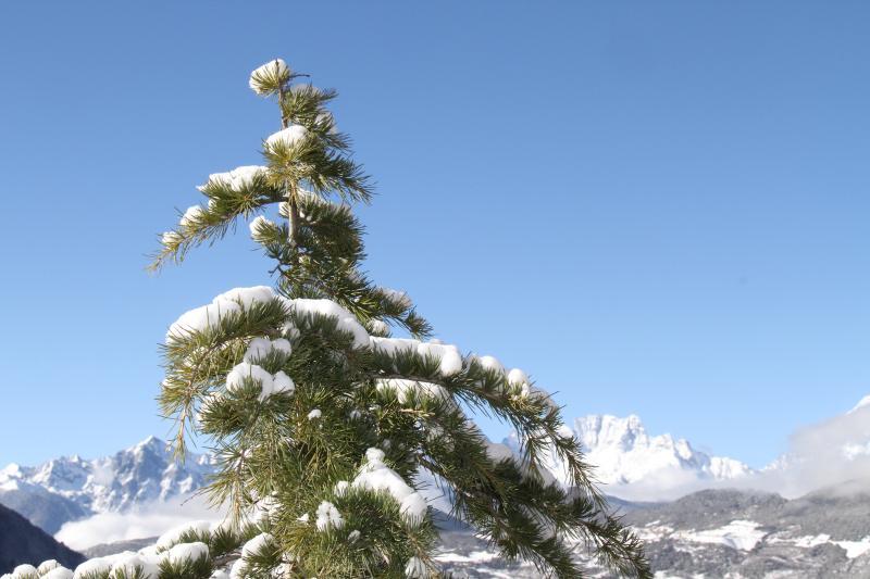 雪后的德钦,随手一拍就是风景