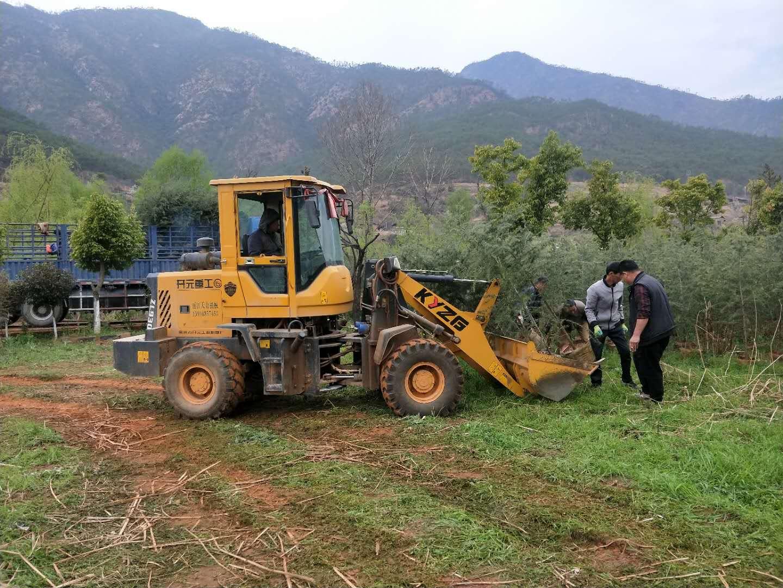 建设生态寺院,绿化生态环境