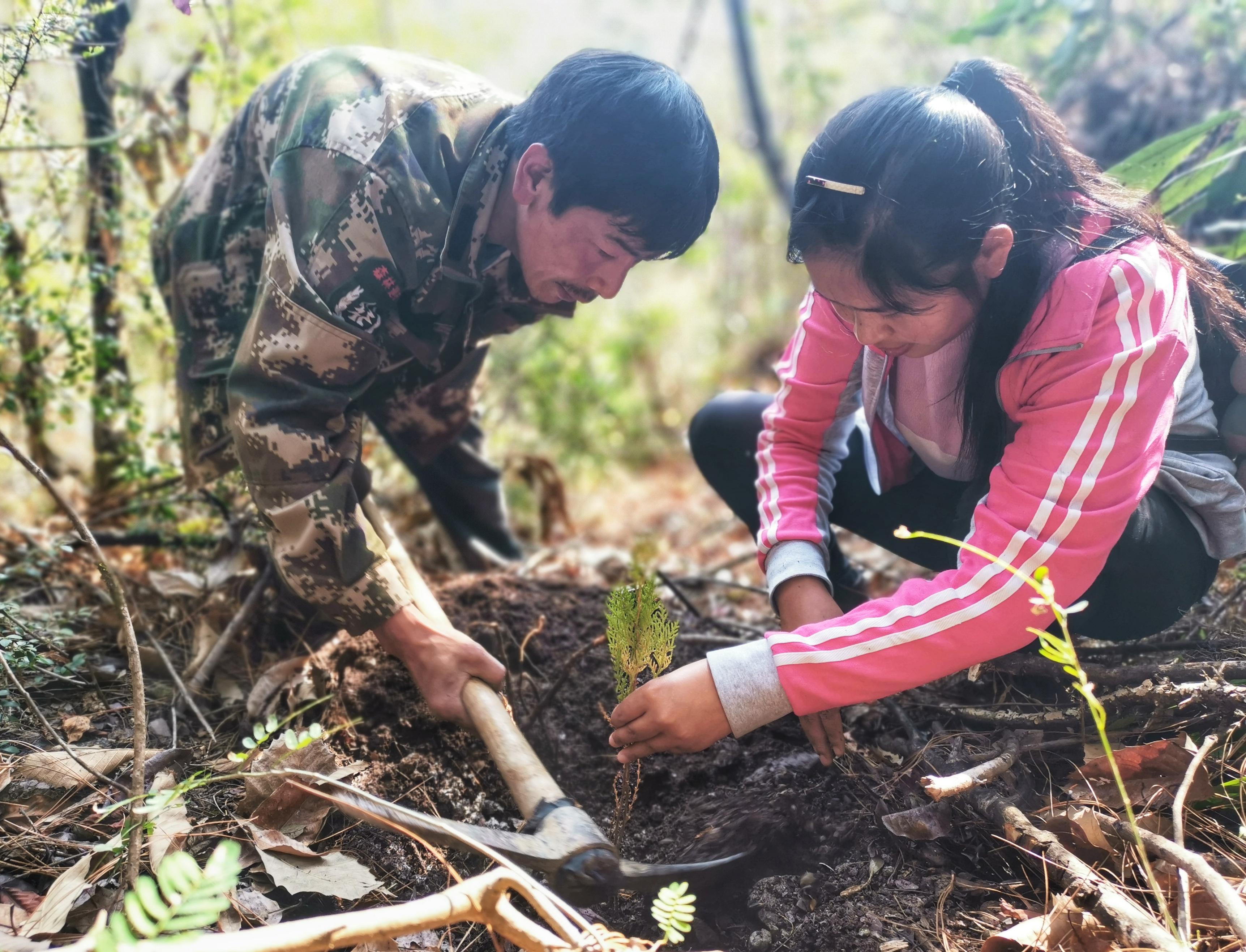 拉嘎洛村村民上山植树造林