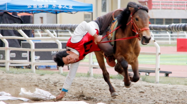 香格里拉端午赛马节第二天:赛马现场涌高潮 箭弩赛场显风流