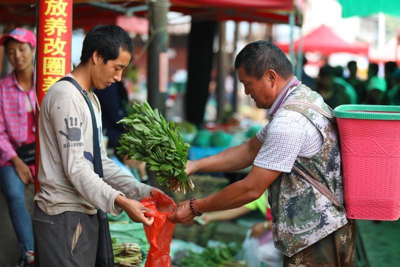 竹叶菜走俏乡村市场 享受高原馈赠的山珍