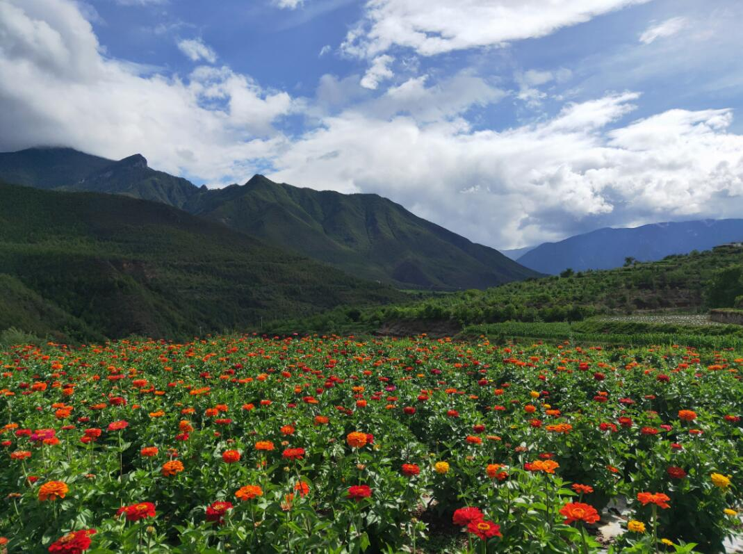 汤满村持续推进乡村旅游振兴本地经济战略