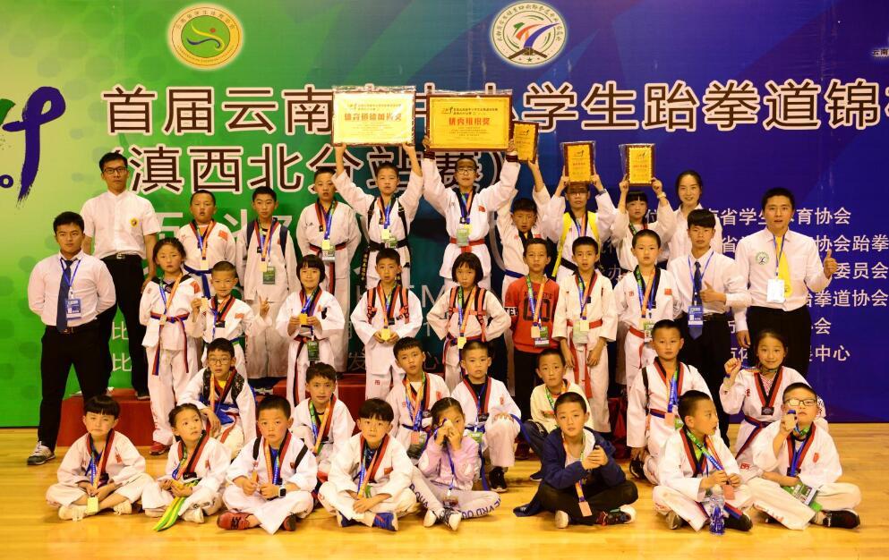 我州中小学生在全省跆拳道锦标赛上获佳绩
