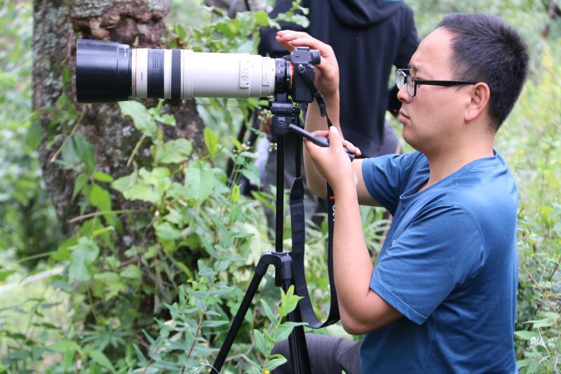 滇金丝猴国家公园暑期游客多