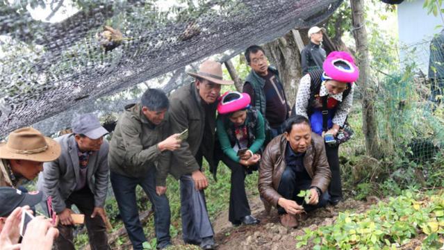 香格里拉市科学技术协会开展农业实用技能培训