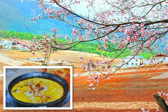 尼西汤堆的桃花和黑陶炖鸡