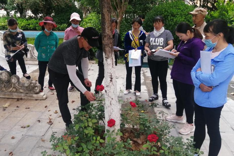 开发区开展花卉园艺培训班