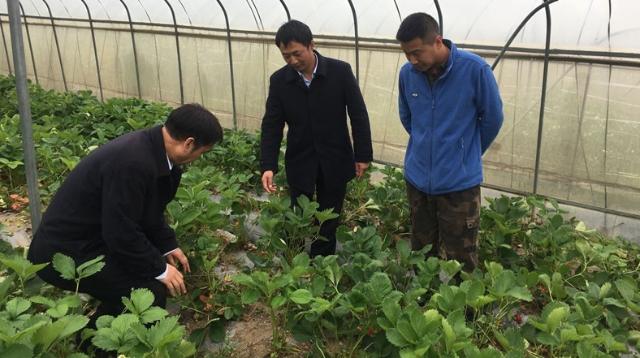 中国建设银行建行驻迪庆分行纪检组开展专项督查工作