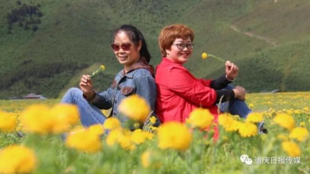 【程志开的镜花缘】今天带你到尼史草原看耀眼的夏花