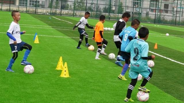 绿茵场上的足球少年