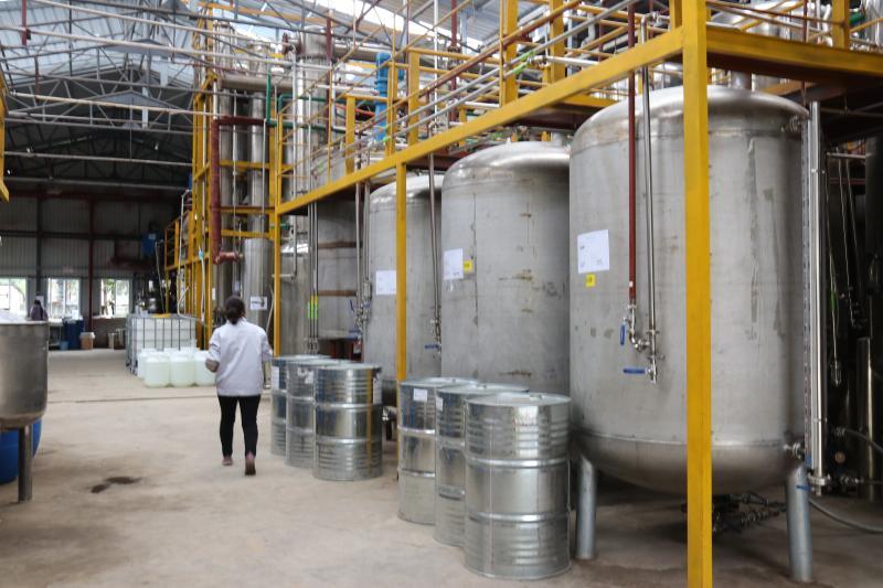 顺源生物红豆杉产品每年可实现1.2亿产值