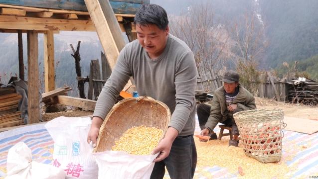 德钦县霞若乡的村民们开启新一年的劳作模式