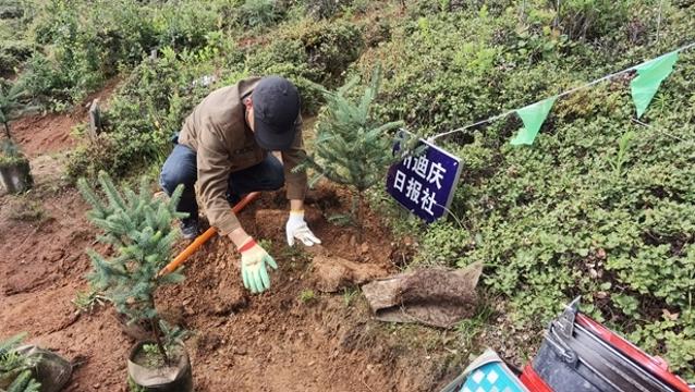 迪庆日报社参加秋季义务植树