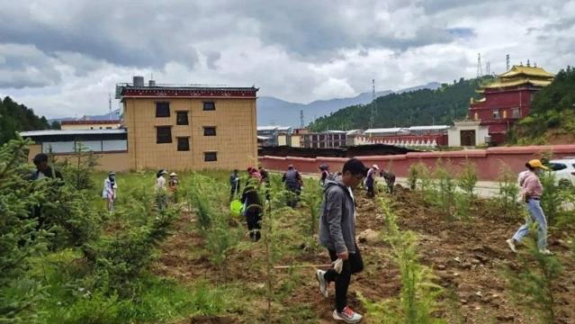 建塘镇北门社区开展裸露黄土整治助力创卫工作