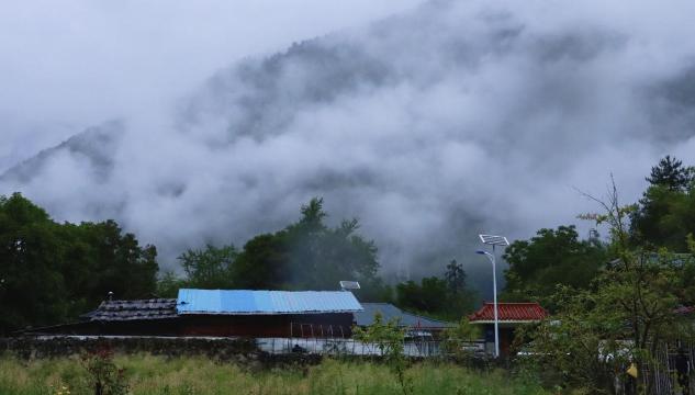 【石榴花开 籽籽同心】西藏林芝巴卡村:白云深处的世外桃源
